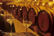 葡萄酒澄清技术