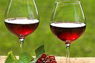 葡萄酒存放常见小错误