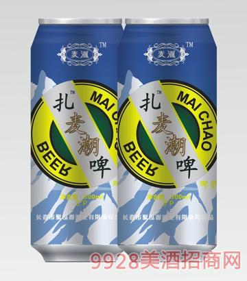 麦潮啤酒500mlx12罐子