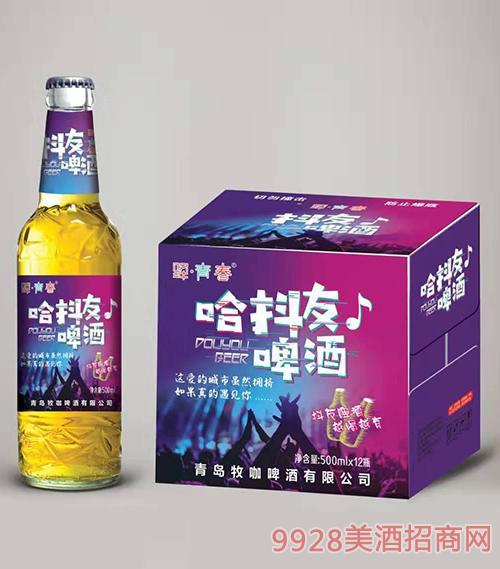 �A青春抖友啤酒500mlx12瓶