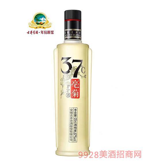 豪菊37度古井�酒