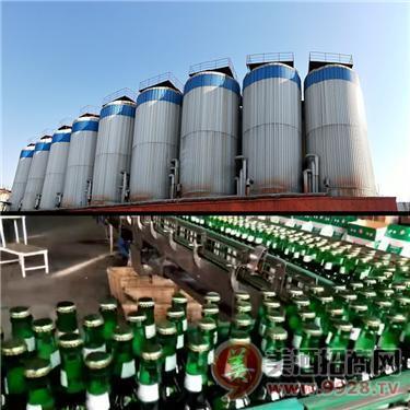 大瓶啤酒供应/箱装500毫升啤酒定制崇左/百色