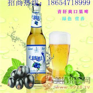 青岛青轩果啤/菠萝啤/香橙啤/优质高端果啤招商加盟