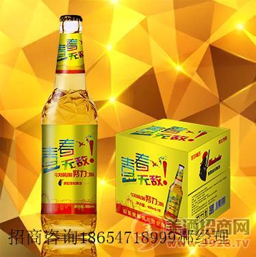 品牌500毫升啤酒/新品啤酒全国诚招总代理商