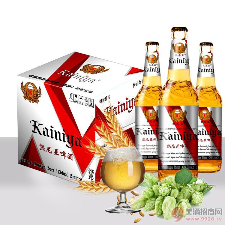 大瓶啤酒招商 大瓶啤酒代理