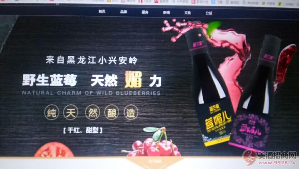 格兰美野生蓝莓酒