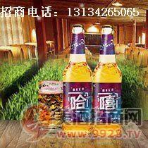 纯生风味啤酒招商/大瓶啤酒代理/河北/河南|郑州
