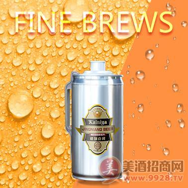 品牌啤酒,精酿箱装啤酒特价