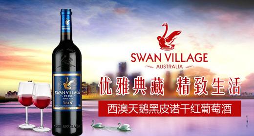 西澳天鹅进口葡萄酒运营商