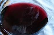 内比奥罗葡萄酒类型和风格