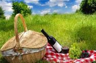 野餐美酒配美食的搭配
