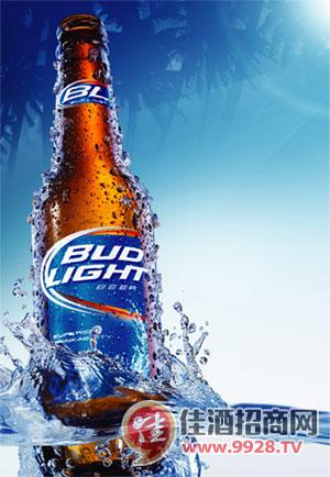 新百威啤酒价格一览表