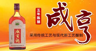 绍兴县咸亨酒业有限公司