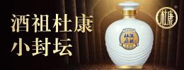 洛阳杜康控股有限公司