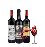 法国原瓶进口艾隆堡葡萄酒