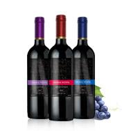 智利帕杰尼�典系列葡萄酒