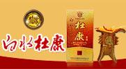 陕西白水杜康酒业集团--山东分厂