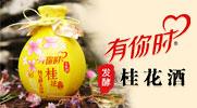 貴州黃氏酒廠有限公司花果發酵酒