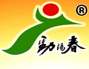 河南劲阳春酒业有限公司