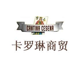 山西卡羅琳商貿有限公司