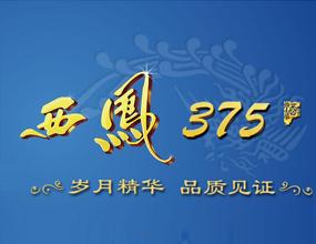 陕西长宇酒业有限公司
