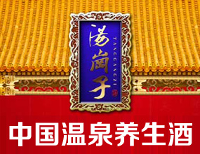 鞍山·海城市五龙春酒业有限公司