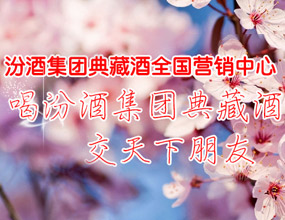 石家庄成帅商贸有限公司