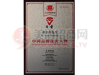 中国品牌优秀人物奖