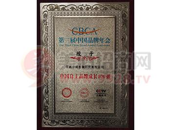 中国自主品牌成长100强