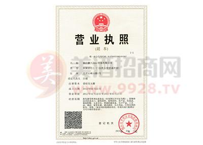 鹏九国际营业执照