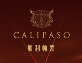 西安加利帕索国际葡萄酒有限公司