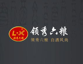 河南领秀六粮酒业郑州销售分公司
