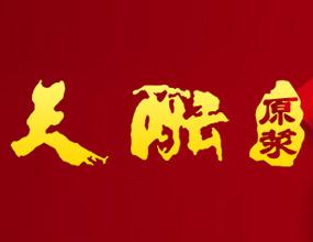 安徽九丰天酝酒业股份有限公司