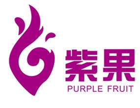 上海紫果國際貿易有限公司