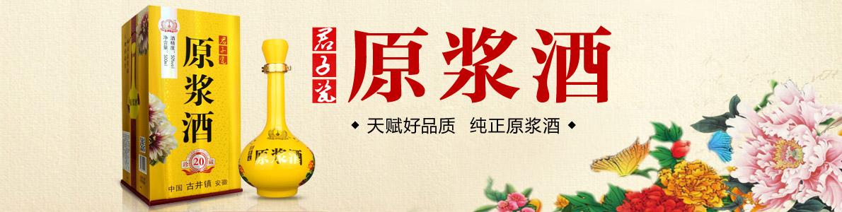 古井镇君子瓷系列原浆酒