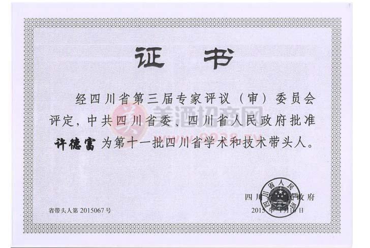 四川省学术技术带头人