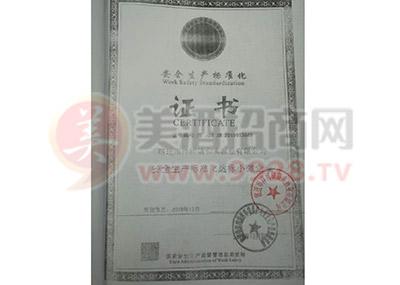 安全生产标准化达标小微企业 证书