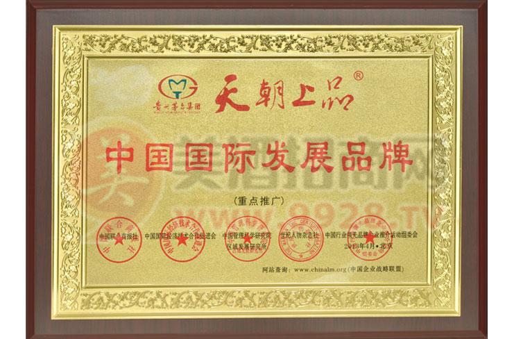 中国国际发展品牌