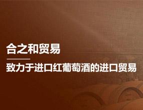 深圳市合之和贸易有限公司