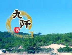 贵州省三都水族自治县九阡酒有限责任公司