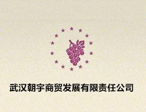 武汉市朝宇商贸发展有限责任公司