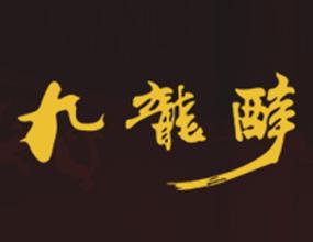 承德九龙实业股份有限公司