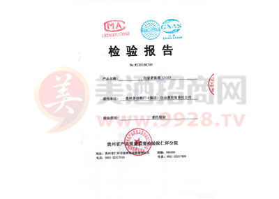 2018白金老酱酒(N10)质检报告1