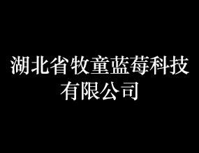湖北省牧童蓝莓科技有限公司