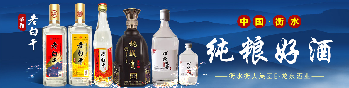 衡水卧龙泉酒业有限公司