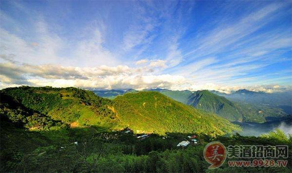 """阿里山列为台湾风景区之一,美景纷陈早为人所称道,因此有""""不到阿里山"""