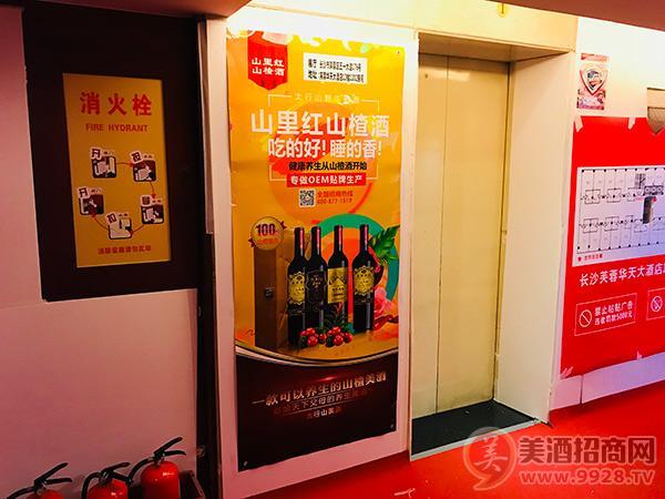 2018长沙秋糖会上高品质健康果酒劲爆来袭