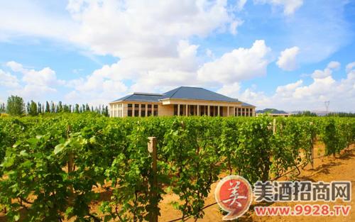 自然酒是不是中国葡萄酒的未来?