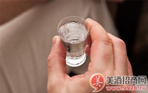 【酒与养生】7种食物帮你在酒后保养胃部