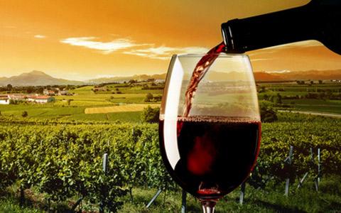 """葡萄酒企业该如何与90后""""打成一片""""?"""